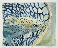 Catch and Release | Watercolor | SOLD