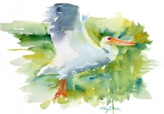 Coming in for a Landing | Watercolor | 9 x 12 | $425
