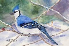 Winter Blue | Watercolor | 4.5 x 6.5 | $125