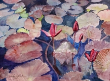 Water Lily Reverie | Watercolor | 9 x 12 | $375