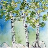 Aspen Trio | Watercolor & Ink | SOLD