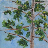 Branching Out | Oil | 6x 6 | $75 | Unframed