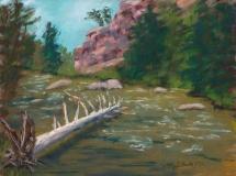 Waterlogged | Plein Air Pastel | 9 x 11 | $235