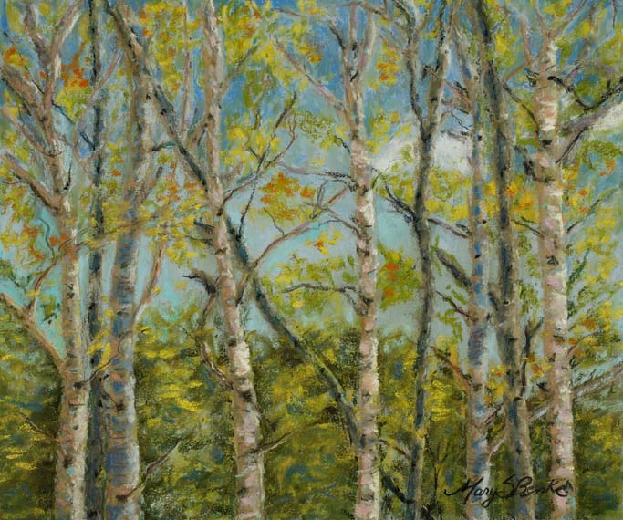 Landscape pastel painting of aspen trees in fall by Mary Benke