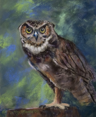 Pastel painting of a great horned owl in the woods by Mary Benke
