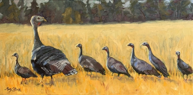 A charming oil painting of a family of wild turkeys done in this horizontal piece in golds, browns, and greens. Mom is watching out for predators as the young ones strut along. The smallest turkey, last in line, looks at the viewer with a surprised expression by Mary Benke
