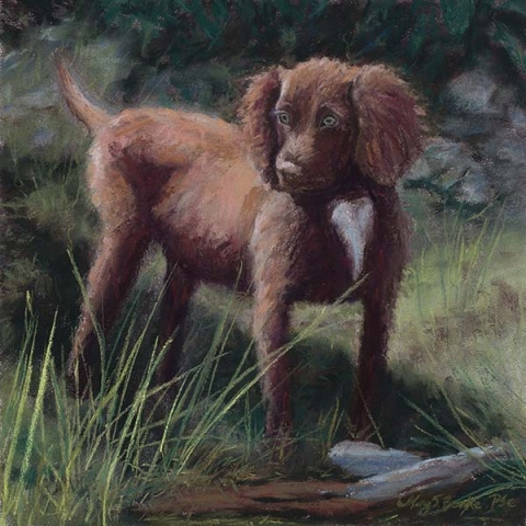 Pet dog pastel portrait of an adorable young brown English cocker spaniel in a forest setting by Mary Benke