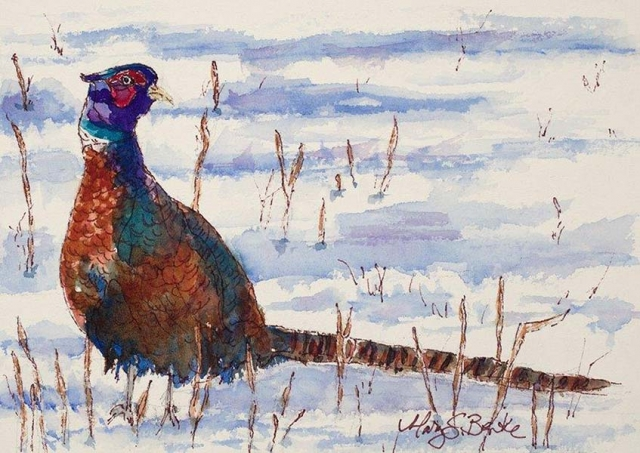 A bold watercolor painting of a fun pheasant posing in the snow by Mary Benke