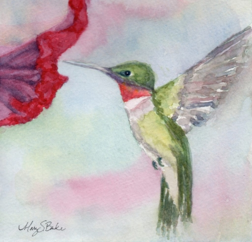 A delicate ruby-throated hummingbird hovers near a petunia in this sweet watercolor portrait in a square format by Mary Benke