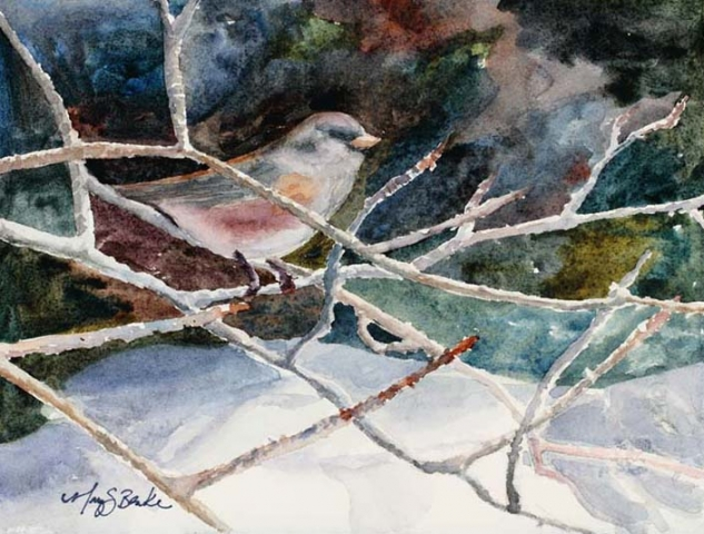 Watercolor painting of a junco songbird sitting on tree branches with a colorful background in the snow by Mary Benke