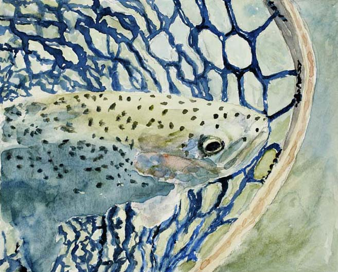 A rainbow trout lingers in an intricate net before being released back into the river in this watercolor painting by Mary Benke
