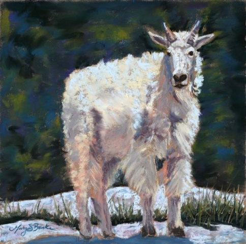 A lone mountain goat/Dall's sheep stands on a rock against an abstract teal and green background in a pastel animal painting by Mary Benke