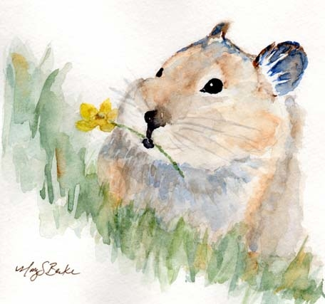 An adorable pika carrying a yellow flower is portrayed in a square format watercolor painting by Mary Benke