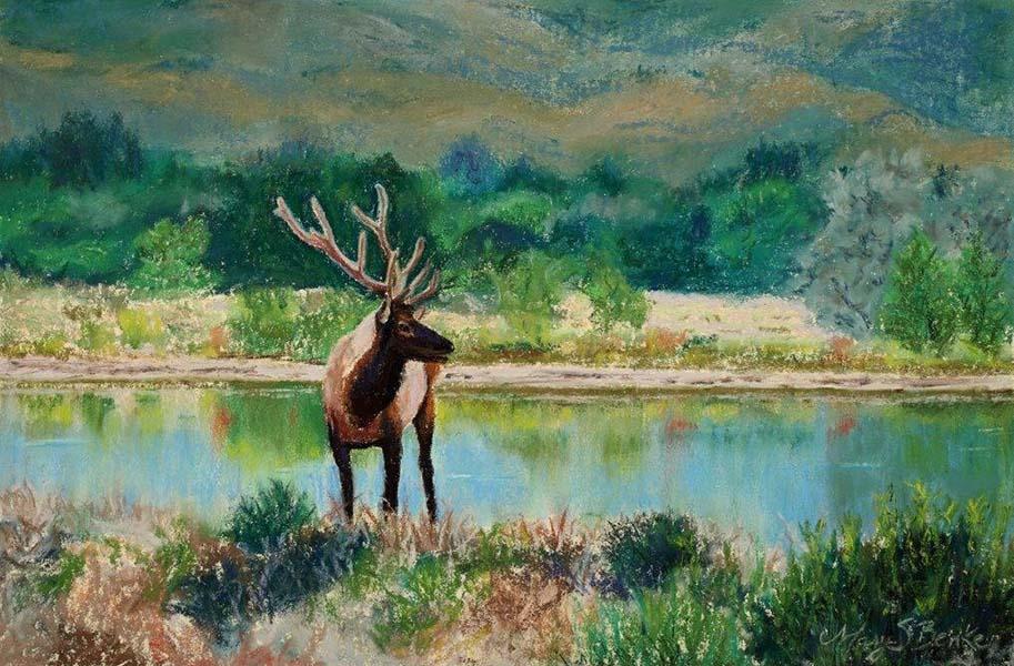 An impressive bull elk captured in pastel with his antlers still in velvet by Mary Benke