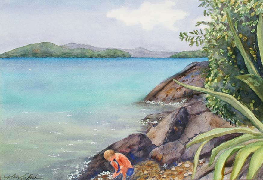 A young boy is fascinated with tidepools and marine life in a beautiful snorkeling spot with turquoise water at Waterlemon Cay on St. John in the U.S. Virgin Islands by Mary Benke